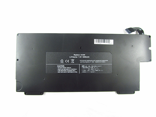 Batterie Pour Apple A1304